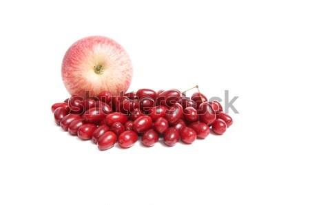 Soczysty jesienią owoce biały obfitość jeden Zdjęcia stock © lypnyk2