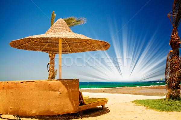 Bella spiaggia tropicale Egitto Palm ombrellone mare Foto d'archivio © lypnyk2