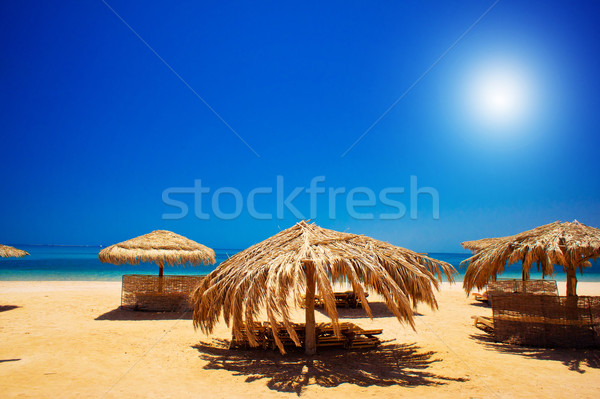 Exotic beach and gulf against blue sky Stock photo © lypnyk2