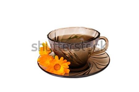 Kubek pachnący herbaty biały jeden herbata ziołowa Zdjęcia stock © lypnyk2