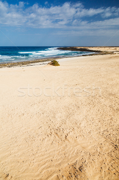 Open beach on a tropical island Stock photo © macsim