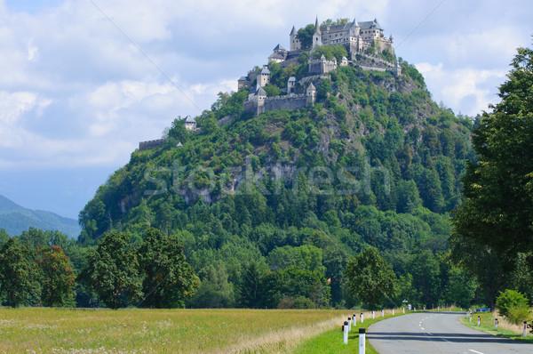 Middeleeuwse kasteel Oostenrijk groot berg gebouw Stockfoto © macsim