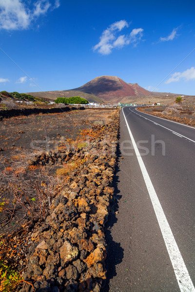 Lege weg lava berg Spanje Stockfoto © macsim