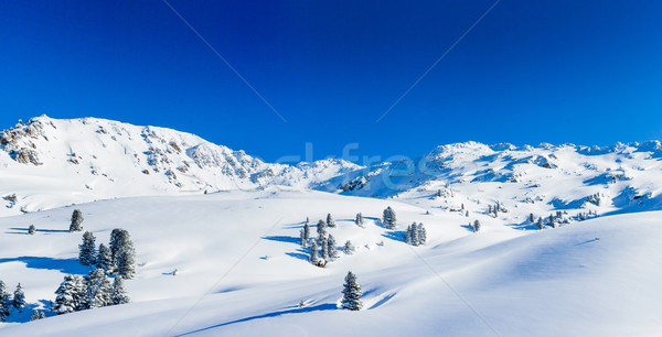 Skiing resort in Austria Stock photo © macsim