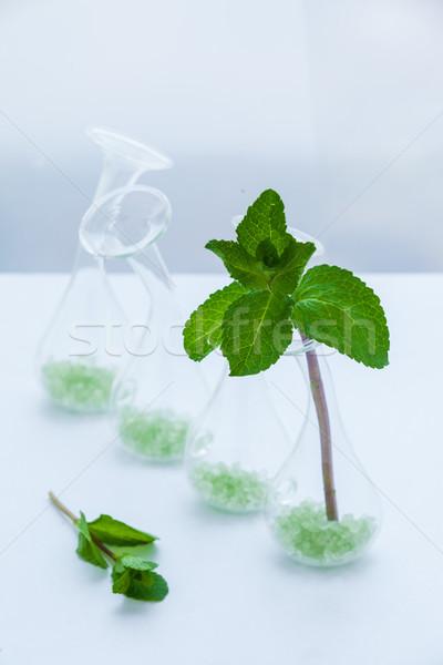 Ingesteld groene mint bladeren glas vaas Stockfoto © macsim