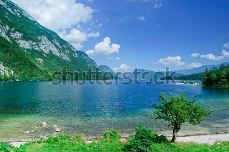Meer Slovenië mooie berg reflectie Stockfoto © macsim