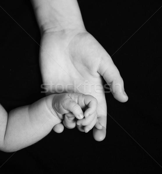 Stock fotó: Kéz · fiatal · baba · szeretet · gyermek · élet