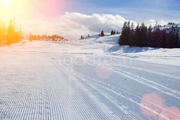 Forêt paysage montagne glace bleu ski Photo stock © macsim