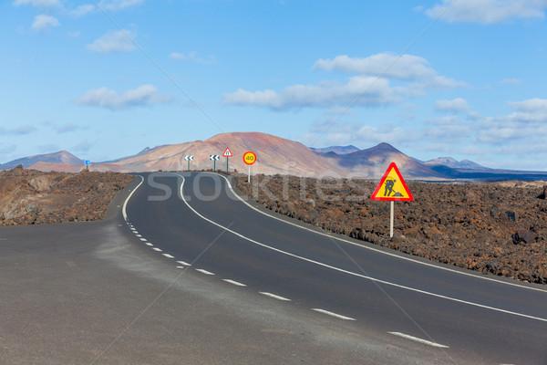 Empty road Lanzarote, Canary islands Stock photo © macsim