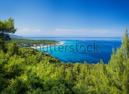 Belle plage panorama côte ciel eau Photo stock © macsim