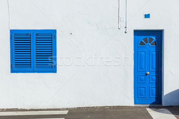 colonial window and door on a wall Stock photo © macsim