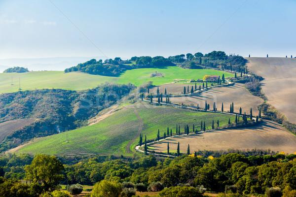 Toszkán tájkép tipikus gyönyörű fű sí Stock fotó © macsim