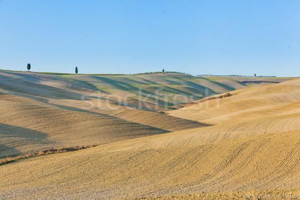 Toszkán tájkép tipikus gyönyörű ősz fű Stock fotó © macsim