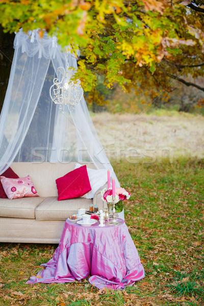 Romantische thee partij bos geserveerd tabel Stockfoto © macsim
