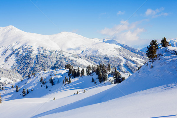 Ski Resort Autriche alpine route paysage Photo stock © macsim