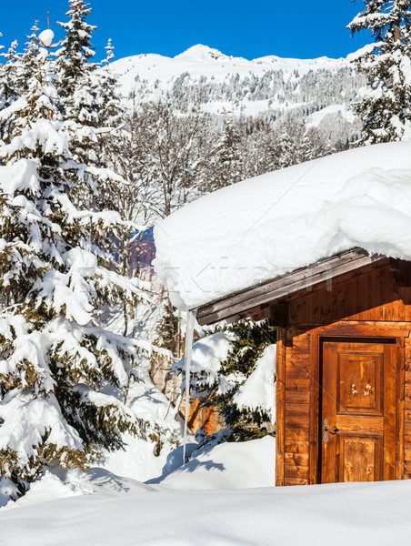 Alpine landschap landschap huis bergen bos Stockfoto © macsim