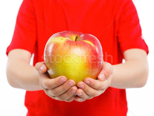 Handen appel omhoog groot rode appel natuur Stockfoto © macsim