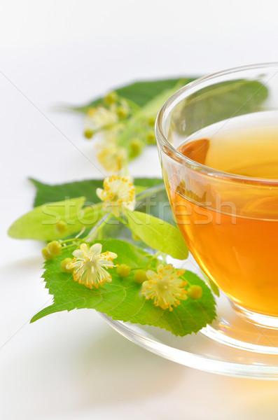 linden tea Stock photo © mady70