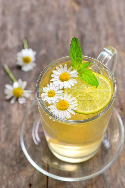 Rumianek herbaty szkła kubek herbata ziołowa świeże Zdjęcia stock © mady70