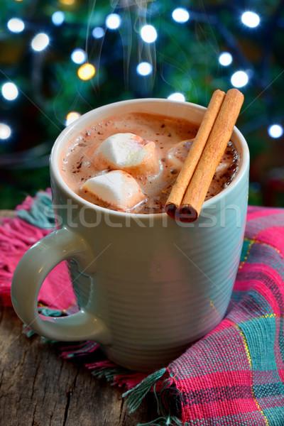 Chocolate caliente invierno tiempo alimentos chocolate mesa Foto stock © mady70