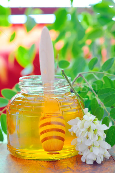 acacia honey Stock photo © mady70