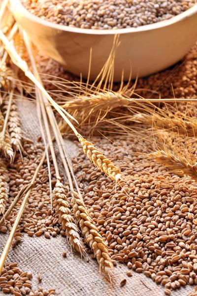 пшеницы семян грубо материальных фон золото Сток-фото © mady70