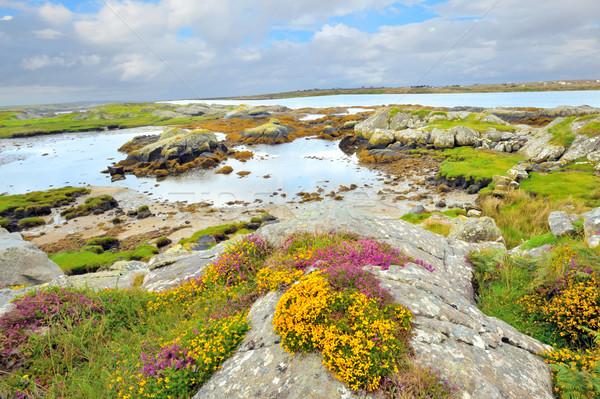 Ierland landschap hdr zomer tijd strand Stockfoto © mady70
