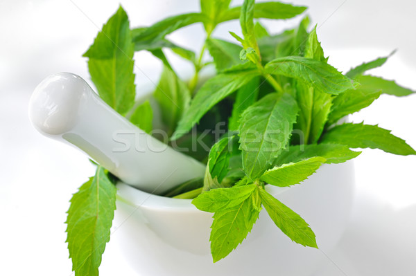 Mortar and mint leaves Stock photo © mady70