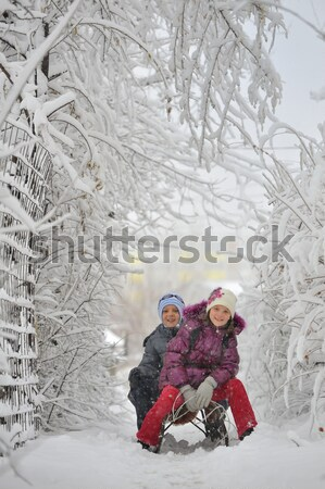 Kids sliding in winter time Stock photo © mady70