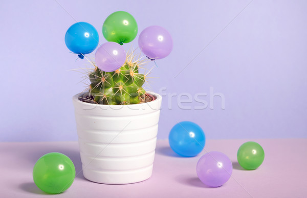 Cactus in pot and small baloons Stock photo © mady70