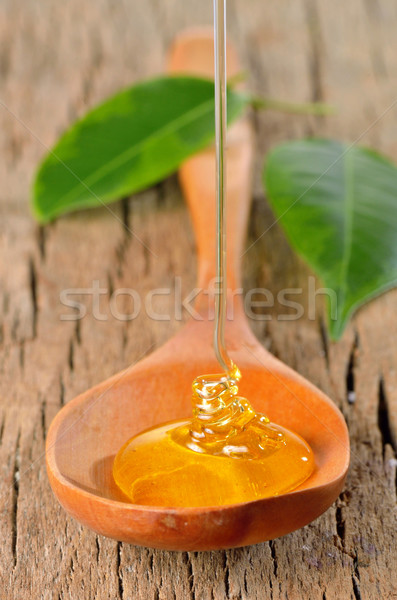 honey pouring Stock photo © mady70