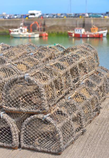 Homard crabe eau mer océan bleu Photo stock © mady70