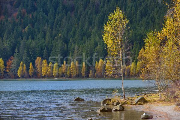 осень желтый листва озеро святой небе Сток-фото © mady70