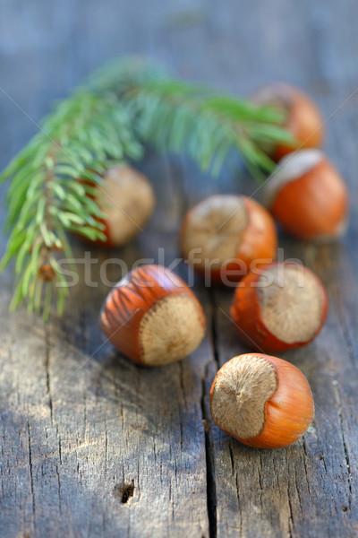 Hazelnuts on  wood table Stock photo © mady70
