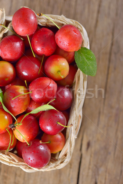 fresh mirabelle plums Stock photo © mady70