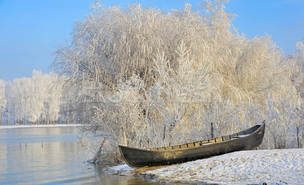 Frosty winter trees and boat Stock photo © mady70