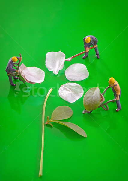 Miniature figures working to create spring flower Stock photo © mady70
