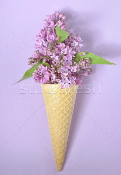 Orgona kúp papír virág absztrakt nyár Stock fotó © mady70