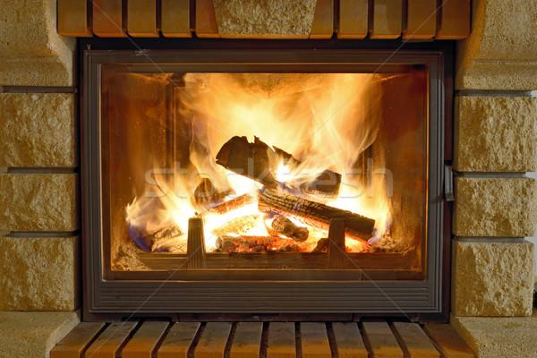 Ardente lareira inverno tempo fogo madeira Foto stock © mady70