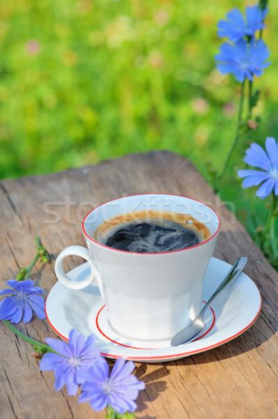 Foto stock: Bebida · caliente · café · sol · naturaleza · verano · azul