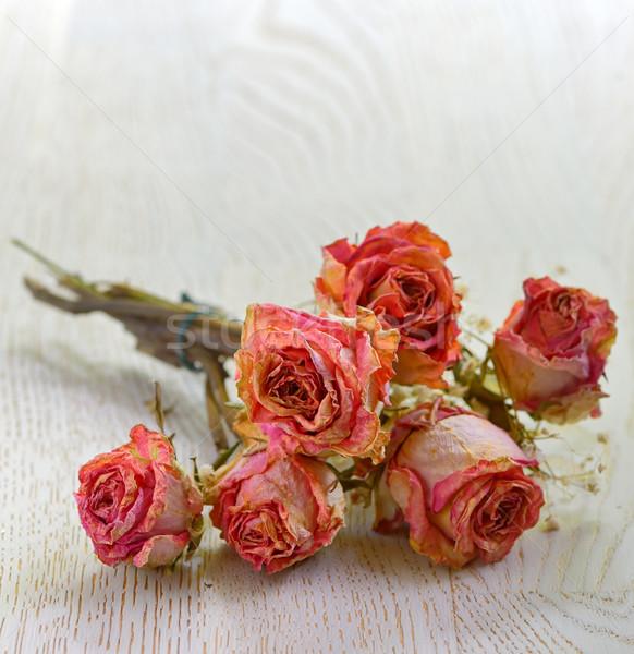 Foto stock: Secar · rosas · aislado · edad · mesa · de · madera · flor