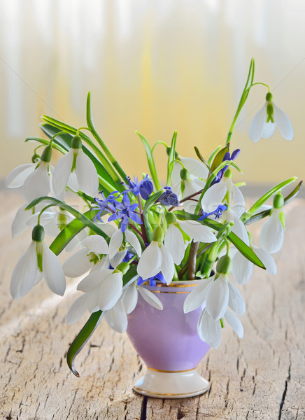 snowdrops in vase on old wood Stock photo © mady70