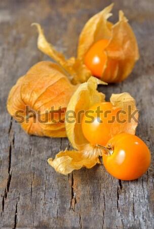 Physalis fruit Stock photo © mady70