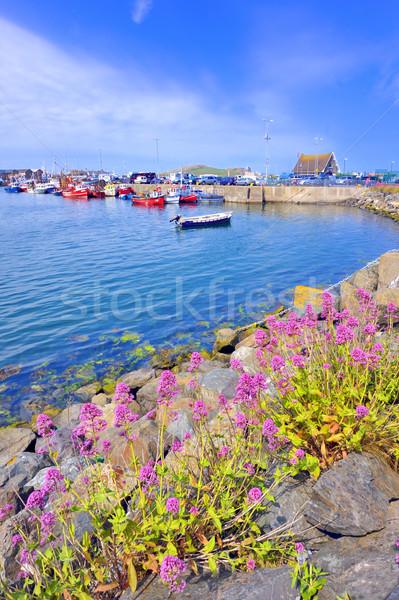 Atlantic port Stock photo © mady70