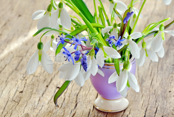 Beautiful bouquet snowdrops in a vase on woody background Stock photo © mady70