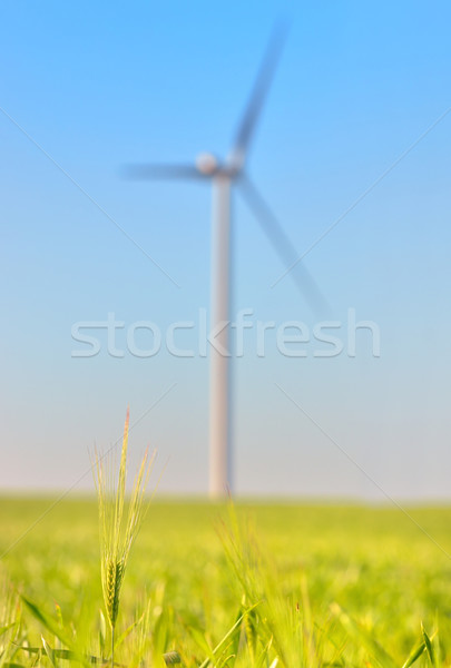 wind turbines on Green wheat field Stock photo © mady70