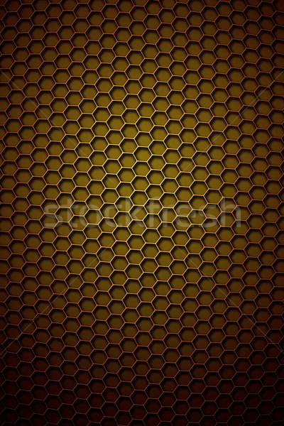 Favo de mel imagem bom fundo quadro trabalhador Foto stock © magann