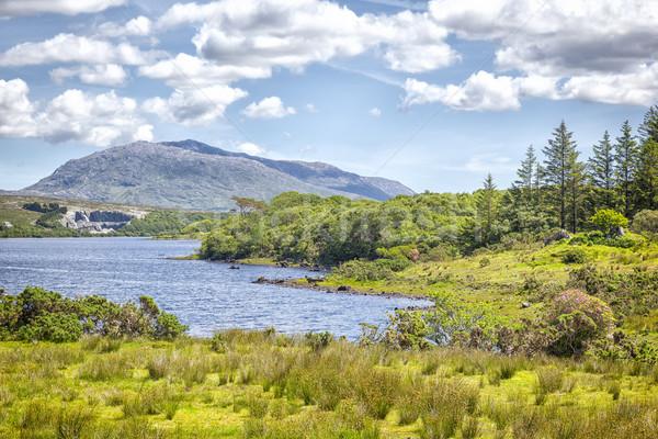 Ierland panoramisch afbeelding water natuur zomer Stockfoto © magann