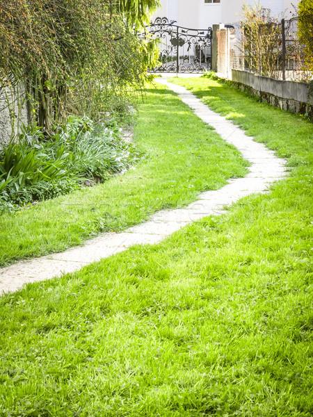 Foto stock: Jardim · caminho · imagem · grama · paisagem · verão