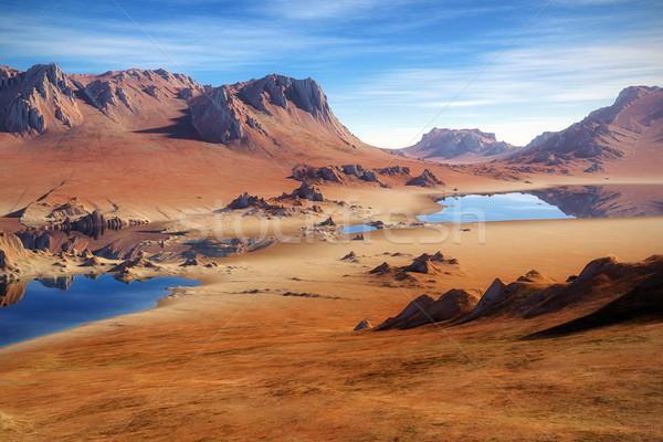 Desierto imagen agradable paisaje cielo árbol Foto stock © magann